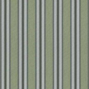 Air Land fern D244